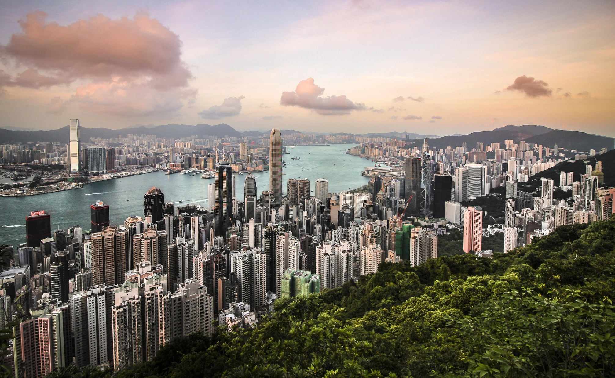 WHEREABOUTS in Hong Kong: a local-driven market stays strong in times of trade wars and protests